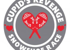 cupids revenge 2017 hal sports
