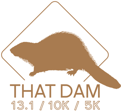Dam Run 5k 10k Half Marathon Denver 2018
